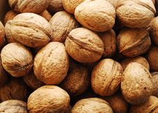 Free Nuts Background Royalty Free Stock Image - 8319016