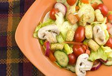 Free Garden Salad In Orange Bowl Royalty Free Stock Images - 8319229