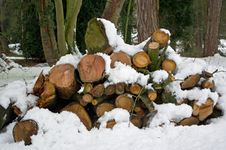 Free Log Pile In The Snow Royalty Free Stock Image - 8319366