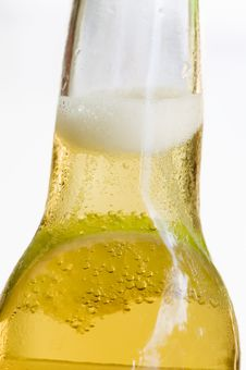 Free Beer Royalty Free Stock Photo - 8320475