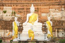 Free Buddha Images. Stock Photos - 8321373