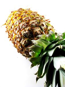 Free Whole Pineapple Stock Photo - 8321860