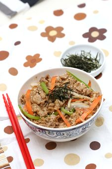 Free Prepared And Delicious Japanese Food-beef Rice Stock Photos - 8322223
