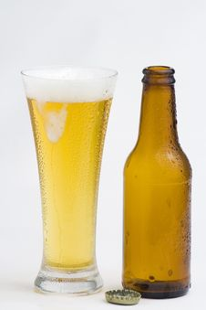 Free Fresh Cold And Tasty Beer Stock Image - 8322261