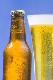 Free Fresh Cold And Tasty Beer Stock Images - 8322344
