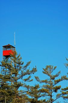 Free Forest Tower Royalty Free Stock Photo - 8322625