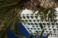 Free Hotel And Palm Trees Royalty Free Stock Photography - 8322747