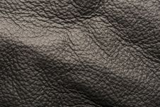 Free Black Leather Royalty Free Stock Images - 8324279