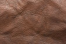Free Brown Leather Stock Images - 8324284