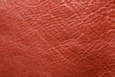Free Leather Royalty Free Stock Image - 8324736