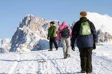 Free Trekking, Snow Climber Royalty Free Stock Image - 8326296