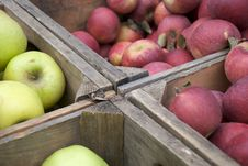 Free Crate Of Apples Stock Images - 8326314
