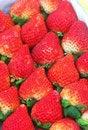 Free Strawberry Stock Photos - 8336603