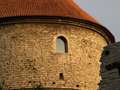Free Medieval Tower Detail Royalty Free Stock Images - 8339779