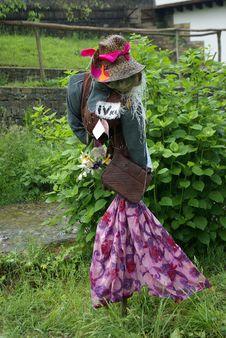 Free Scarecrow Stock Image - 8330351