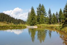 Free Trees And Clouds Reflect In Pond Stock Image - 8332041