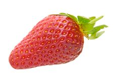 Free Strawberry Stock Images - 8333044