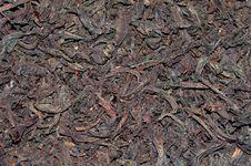 Free Large Leaves Of Black Tea Royalty Free Stock Photos - 8333178