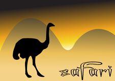 Free Ostrich In Safari Royalty Free Stock Photo - 8333435
