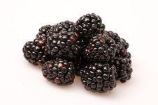 Free Blackberries Royalty Free Stock Photos - 8334328