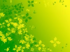 Free Four Leaf Clover Royalty Free Stock Photo - 8334505