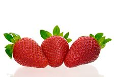 Free Three Delicious Strawberries Royalty Free Stock Photography - 8334617