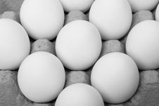 Free Eggs Stock Photography - 8335372
