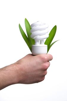 Free Person Holding A Modern Green Light Bulb Royalty Free Stock Images - 8335649