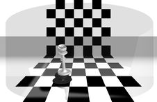 Free Chess Queen Manage Stock Photo - 8337250