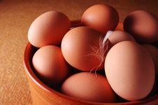 Free Eggs Royalty Free Stock Image - 8339116