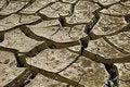Free Cracked Soil Royalty Free Stock Photos - 8342308