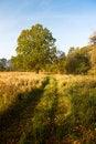 Free Autumn Scenery Stock Photo - 8342840