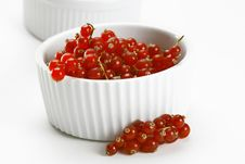 Free CURRANT Royalty Free Stock Photo - 8340765