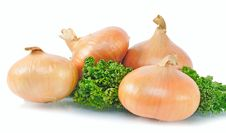Free Four Onions Royalty Free Stock Image - 8340946