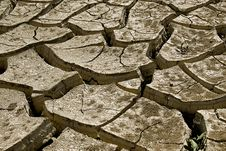 Free Cracked Soil Royalty Free Stock Photos - 8342308