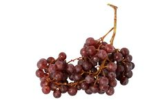 Free Bunch Of Grapes Stock Photos - 8343723