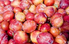 Free Fresh Plums Stock Images - 8345464