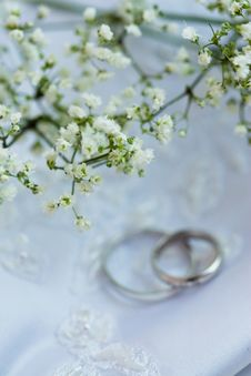 Free Wedding Accessories Stock Images - 8346124