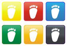 Free Web Button - Bear Paws Royalty Free Stock Photo - 8347035