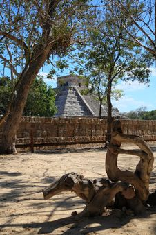 Free The Temples Of Chichen Itza Temple In Mexico Royalty Free Stock Photos - 8348968