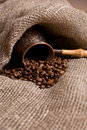 Free Cezve With Freshly Roasted Coffee Beans Royalty Free Stock Photography - 8356537
