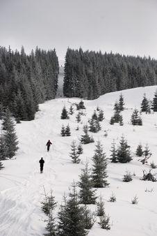Free Mountain Explorers Royalty Free Stock Photo - 8350595