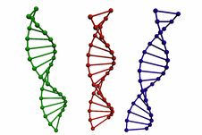 3D Model Of DNA Structure Royalty Free Stock Images
