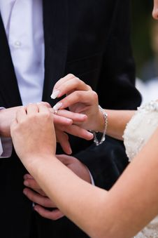 Free Wedding Ring Stock Photo - 8352020