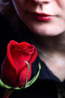Free Red Rose And Woman Stock Images - 8353544