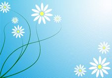 Free Floral Background Royalty Free Stock Image - 8353556