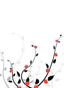 Free Rose Background Stock Image - 8353661