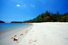 Free Beach Stock Photos - 8354533