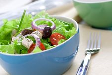 Free Salad With Greens Stock Images - 8355474