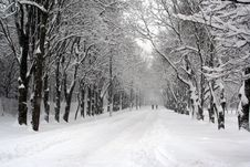 Free Parking Path In Winter. Stock Photography - 8357602